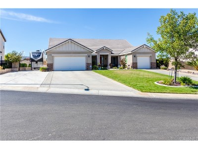 Lancaster Single Family Home For Sale: 41413 Yew Street