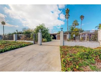 Granada Hills Single Family Home For Sale: 17325 Ludlow Street