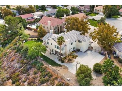 Palmdale Single Family Home For Sale: 41872 Baja Court