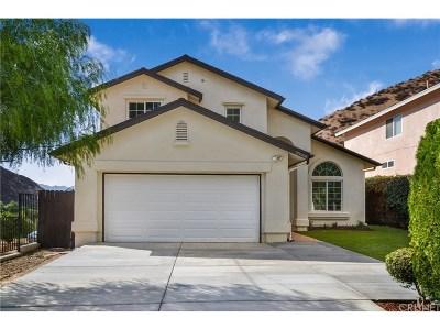 Castaic Single Family Home For Sale: 30008 Buchanan Way