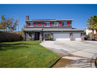 Palmdale Single Family Home For Sale: 39215 Chantilly Lane
