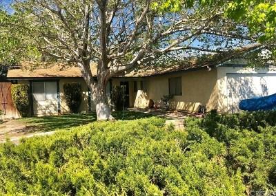 Palmdale Single Family Home For Sale: 37323 Sabal Avenue