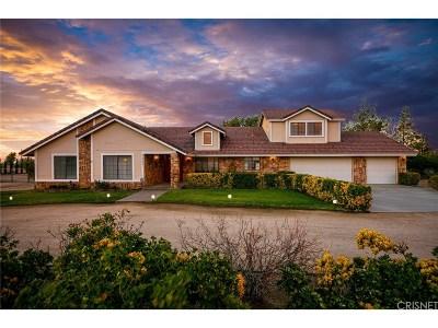 Littlerock Single Family Home For Sale: 9141 East Avenue S4