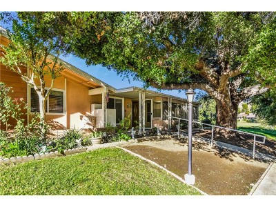 Newhall Condo/Townhouse For Sale: 26739 Oak Crossing Road #B