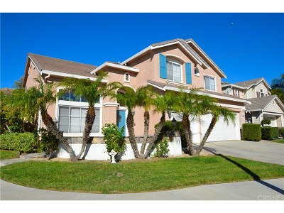 Saugus Single Family Home For Sale: 28703 Rock Canyon Drive