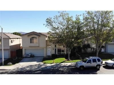 Castaic Single Family Home For Sale: 31356 Nichols Lane