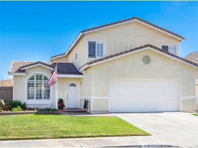 Castaic Single Family Home For Sale: 29130 Diablo Place