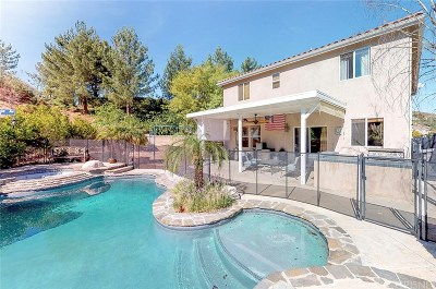 Castaic Single Family Home For Sale: 29901 Crawford Place