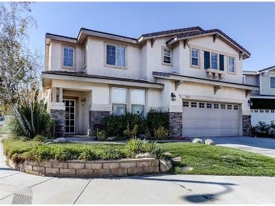 Castaic Single Family Home For Sale: 32251 Shadow Lake Lane