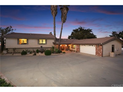 Palmdale Single Family Home For Sale: 36456 El Camino Drive