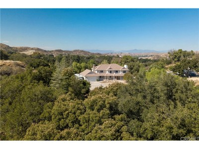 Sand Canyon (SAND) Single Family Home For Sale: 27531 Trail Ridge Road