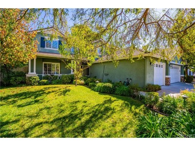 Woodland Hills Single Family Home For Sale: 6264 Penfield Avenue