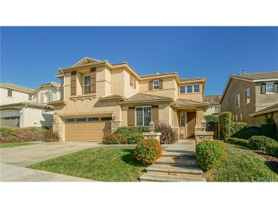 Saugus Single Family Home For Sale: 29134 Discovery Ridge Drive