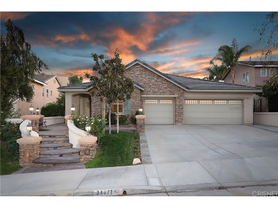 Castaic Single Family Home For Sale: 28072 Hayward Drive