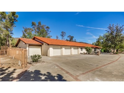 Agua Dulce Single Family Home For Sale: 35044 Johnson Road