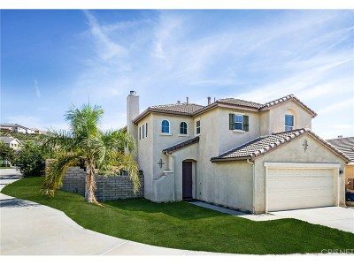 Saugus Single Family Home For Sale: 28470 Santa Catarina Road