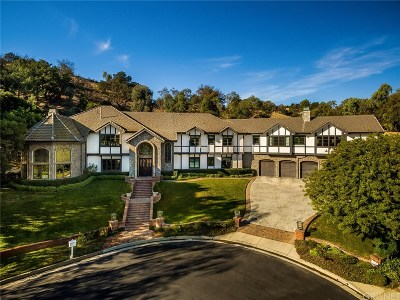 Calabasas CA Single Family Home For Sale: $4,500,000
