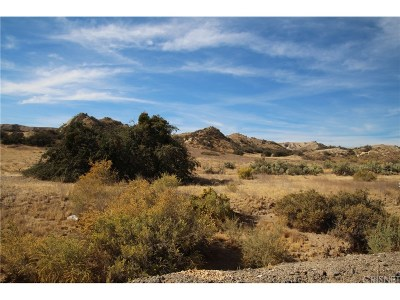 Canyon Country Residential Lots & Land For Sale: Apn: 2812-001-009