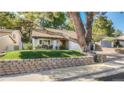 Canyon Country Single Family Home For Sale: 29031 Flowerpark Drive