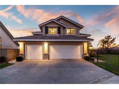 Canyon Country Single Family Home For Sale: 14314 Platt Court