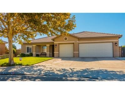 Lancaster Single Family Home For Sale: 43909 Johns Court