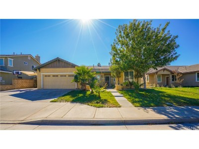 Lancaster Single Family Home For Sale: 6224 Starview Drive