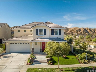 Saugus Single Family Home For Sale: 22550 Brightwood Place