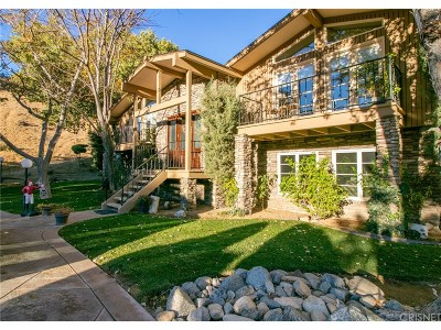 Single Family Home For Sale: 11111 Lonesome Valley Road