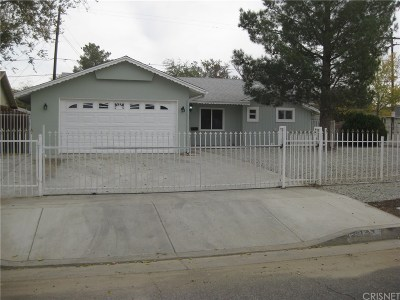 Single Family Home For Sale: 45504 Andale Avenue