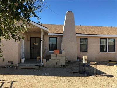 Lancaster Single Family Home For Sale: 9627 West Avenue B