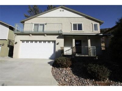 Lake Hughes Single Family Home For Sale: 17813 Elizabeth Lake Road