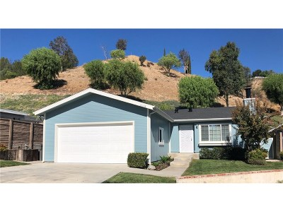 Canyon Country Single Family Home For Sale: 20135 Canyon View Drive #445