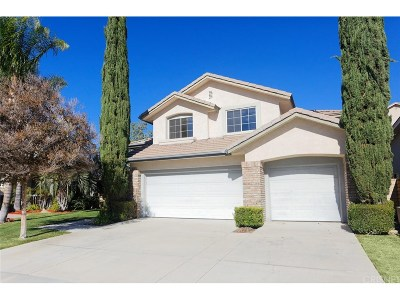 Canyon Country Single Family Home For Sale: 14309 Platt Court