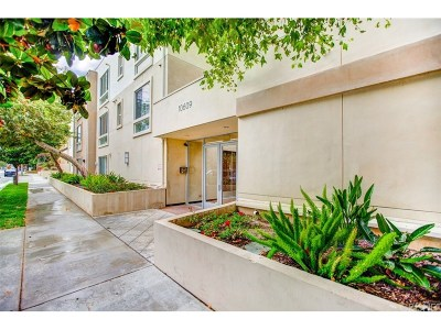 Toluca Lake Condo/Townhouse For Sale: 10609 Bloomfield Street #307