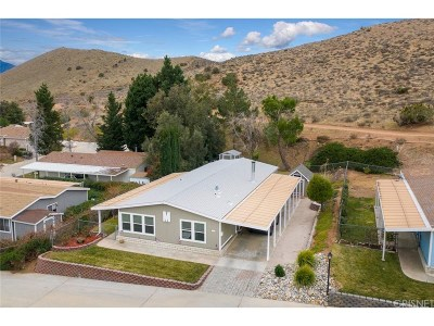 Acton Condo/Townhouse For Sale: 33105 Santiago Road #76