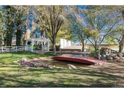 Lancaster Single Family Home For Sale: 6614 East Avenue K