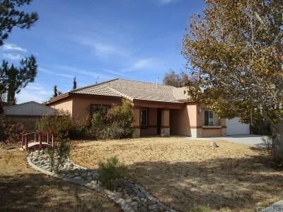Lancaster Single Family Home For Sale: 44107 Georgia Court