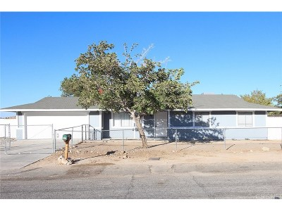 Palmdale Single Family Home For Sale: 16523 Mackennas Gold Avenue