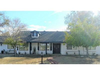 Littlerock Single Family Home For Sale: 10226 East Avenue R12