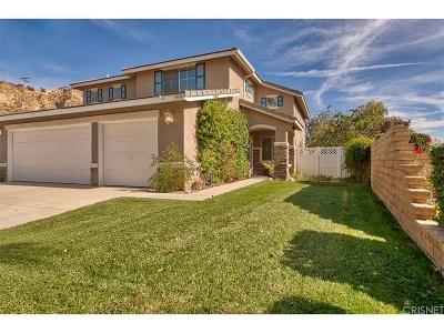 Castaic Single Family Home For Sale: 30588 Park Vista Drive