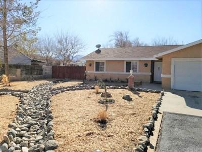 Littlerock Single Family Home For Sale: 9808 East Avenue S4 South