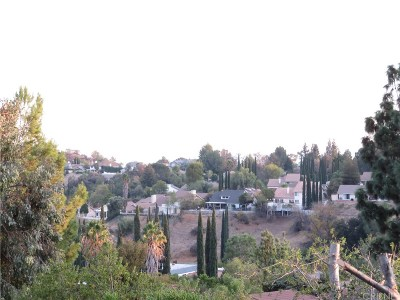 Granada Hills Single Family Home For Sale: 17608 Orna Drive