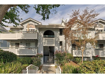 Canyon Country Condo/Townhouse For Sale: 26806 Claudette Street #324
