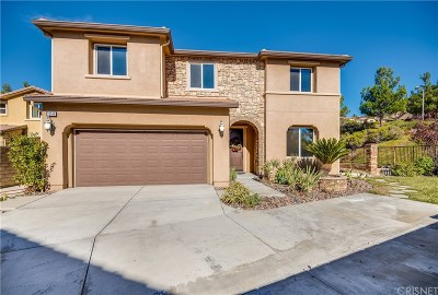 Saugus Single Family Home For Sale: 28568 Argenti Court