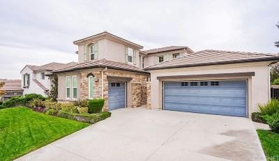 Valencia Single Family Home For Sale: 26938 Pebble Ridge Place