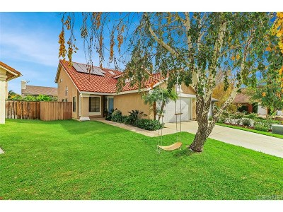 Calabasas Single Family Home For Sale: 26922 Deerweed Trails