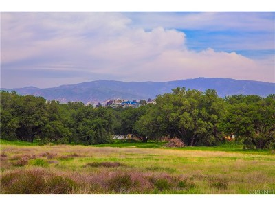 Canyon Country Residential Lots & Land For Sale: 26837 Sand Canyon Road