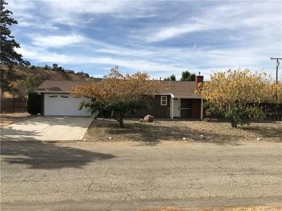 Lake Hughes Single Family Home For Sale: 14404 Ashtree Drive