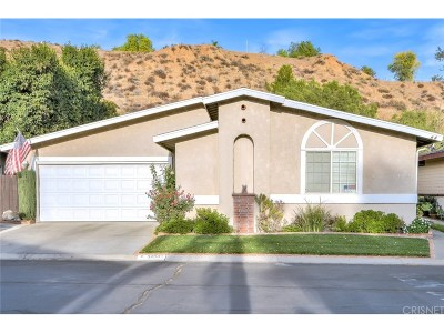 Castaic Single Family Home For Sale: 32002 Quartz Lane