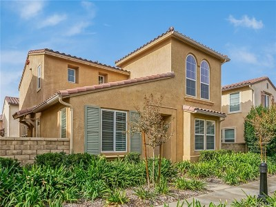Castaic Single Family Home For Sale: 31762 Avenida Sonrisa